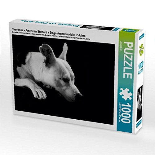 Cheyenne - American Stafford x Dogo Argentino-Mix, 2 Puzzle Jahre 1000 Teile Puzzle 2 quer f3cb42
