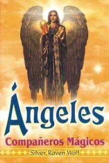 Download Angeles companeros magicos/ Angels Magic fellow (Spanish Edition) ebook
