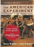 The American Experiment, Steven M. Gillon, 0395677521
