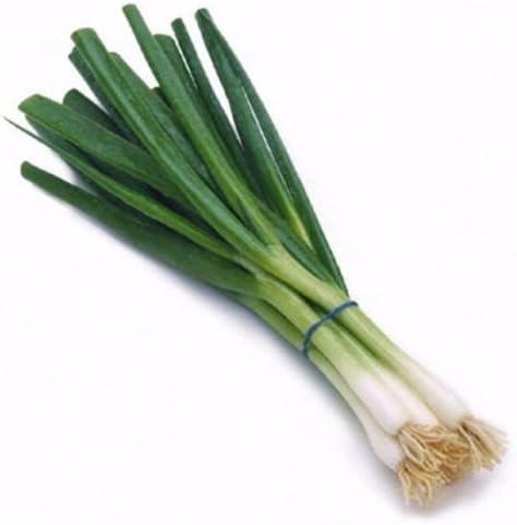Cebolla de verdeo/cebolla verde agrupamiento 500 semillas de ...