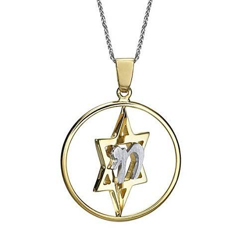 - Star of David Pendant with Chain 14k Gold White Yellow Shiny & Matt Star of David Hai pendant
