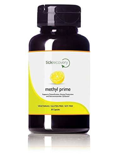 Tick Recovery: Methyl Prime, a Vegan, Gluten-Free, Non-GMO Supplement for Tick-Borne Illnesses to Improve Brain Function, Energy Levels, Sleep Quality & More