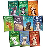 img - for Holly Webb 10 books Collection Puppy and kitten Childrens Gift Set Sophy William (Timmy in Trouble, Max the Missing Puppy, Sam the Stolen Puppy, Buttons the Runaway Puppy, Harry the Homeless Puppy, more) book / textbook / text book