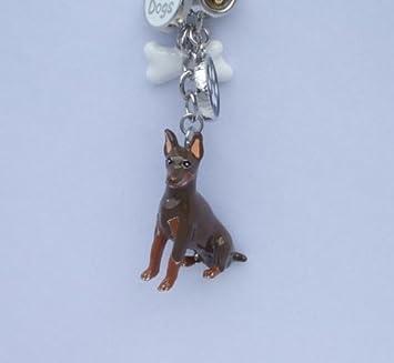 Amazon.com: Doberman perro llavero y bolsa encanto de orejas ...