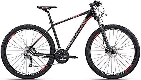Bottecchia Bicicleta MTB 125 TY500 29
