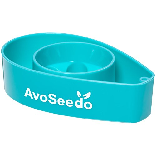 avoseedo-grow-your-own-avocado-tree-blue