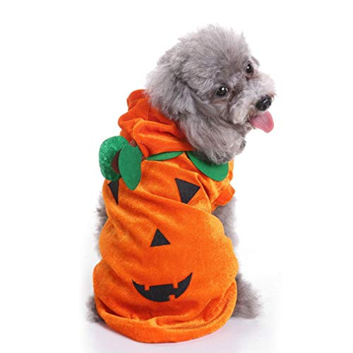Pet Orange Pumpkin Costume for Cat Puppy Small Dog, Dog/Cat Costume Halloween Christmas Accessory for Cosplay Party,Pet Party (M)