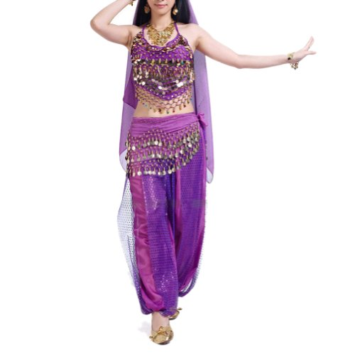 Harem Dancer Adult Women Costumes (BellyLady Egyptian Belly Dance Costume, Halter Bra Top and Tribal Harem Pants PURPLE)