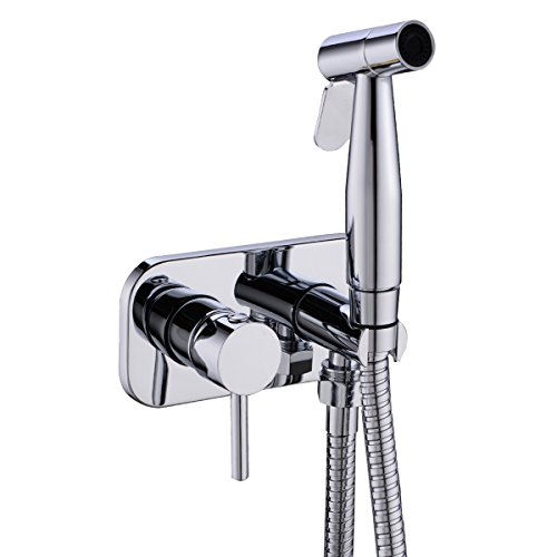 (HANEBATH Toilet Concealed Hot and Cold Bidet Spray Set,Chrome )