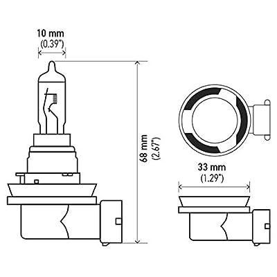 HELLA H16 Standard Halogen Bulb, 12 V, 19W: Automotive