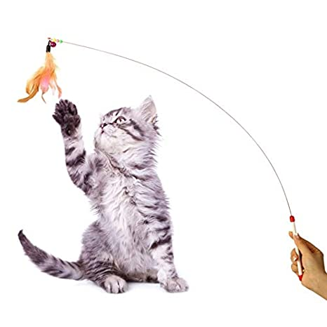 Amazon.com: Cat Toys - 2019 12pcs Playing Mouse Ball Catnip Bell Small Mini Cat Toys Gifts Kitten Value Pet Set Gatos - Hang Banana Over Wand Real Girly ...
