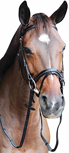 Henri de Rivel Piaffe Mono Crown Bridle w/Flash Nose Band and Patent Leather