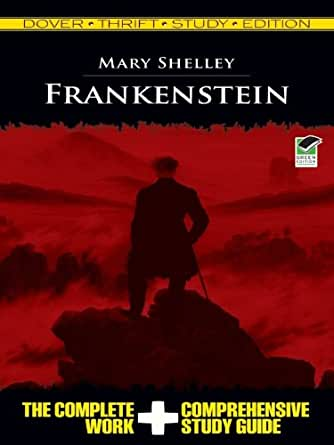 an analysis of the popularity of frankenstein by mary shelley The most eloquent summary of mary wollstonecraft shelley's the immense popularity of frankenstein had though frankenstein assures mary shelley a.