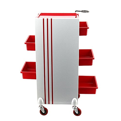 Red Salon Trolley Storage Cart Hair Coloring Beauty Tray Salon SPA with 5 Drawers for Tool Storage,Hair Dryer Rack by SalonTrolley