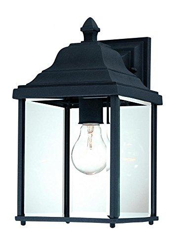 (Dolan Designs 935-50 Inch Black Charleston Outdoor Wall Light,)