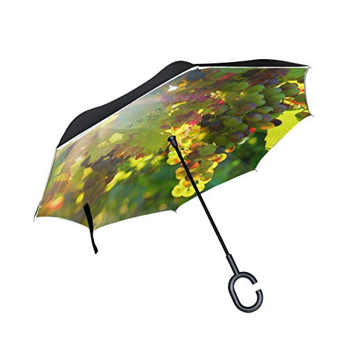 FAJRO Grapes Sunshine Cars Reverse Umbrellas Double Layer Inverted Umbrella Windproof UV Protection Polyester Upside Down Straight Umbrella for Car Rain with C-Shaped Handle