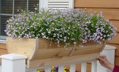 Rounded Cedar Deck Rail Planter Large