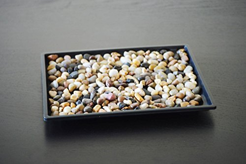 9GreenBox Bonsai Humidity Drip Tray with Pebbles Rocks, 8-Inch x 6-Inch