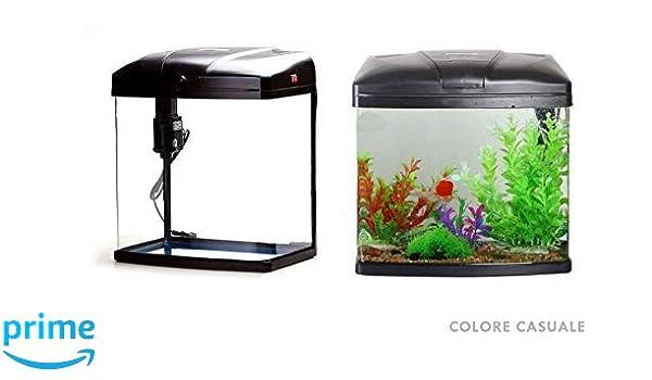 takestop® Acuario 4 litros t190 °F con Sistema de filtrado E iluminación 19 x 14 x 19 cm Peces Pescado Tropicales Agua Salada 3 W Color Blanco/h Color AL ...