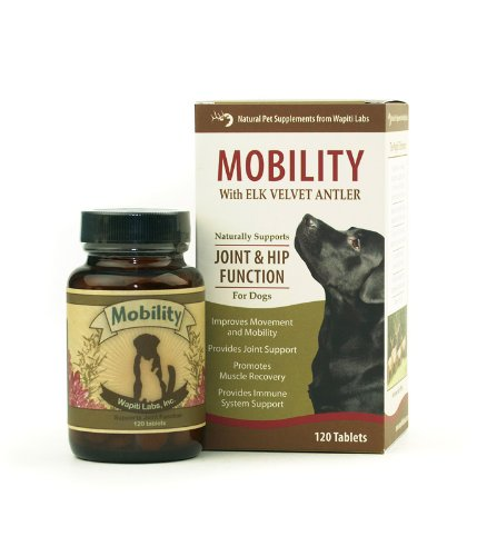 Wapiti Labs Dob Mobility 120 Count Tablet, My Pet Supplies