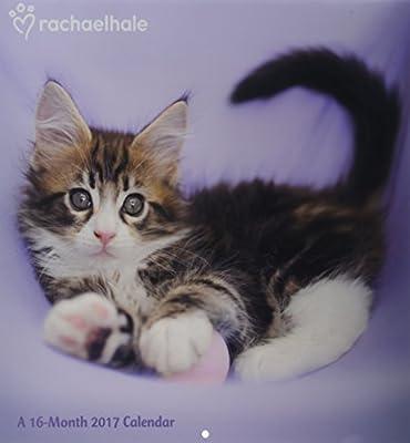 Rachael Hale Cats 2017 Calendar