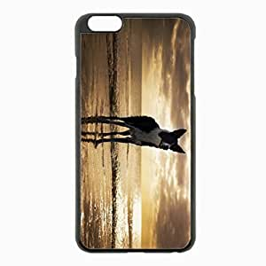 iPhone 6 Plus Black Hardshell Case 5.5inch - usa florida dog beach Desin Images Protector Back Cover