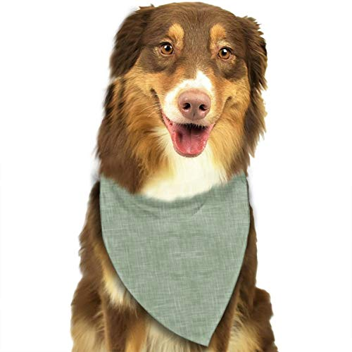 FRTSFLEE Dog Bandana Solid Light Sage Green Linen