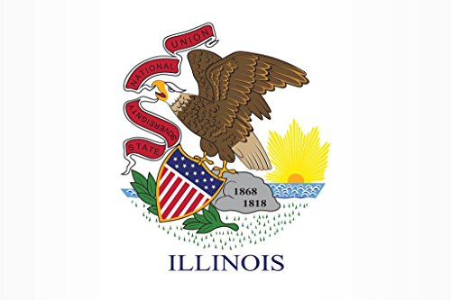 Illinois State Flag Mural Giant Poster 36x54 inch