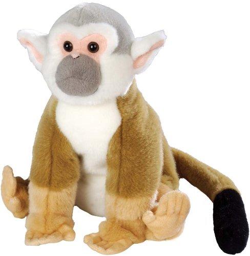 Squirrel Monkey 12