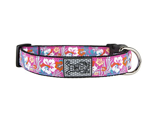 1 Inch Adjustable Collar - RC Pet Products Hibiscus 1