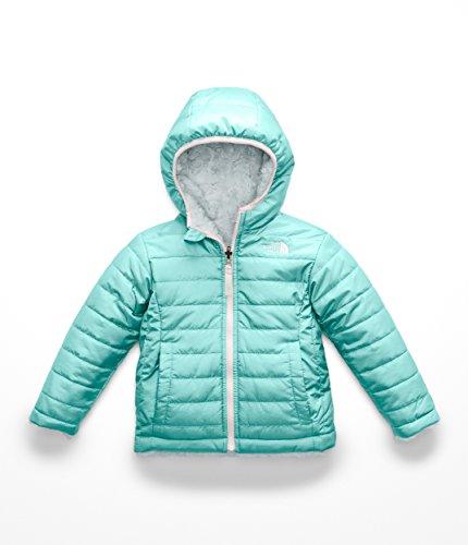 Exterior Zip Pocket - The North Face Toddler Girl's' Reversible Mossbud Swirl Jacket 4T Mint Blue/Origin Blue