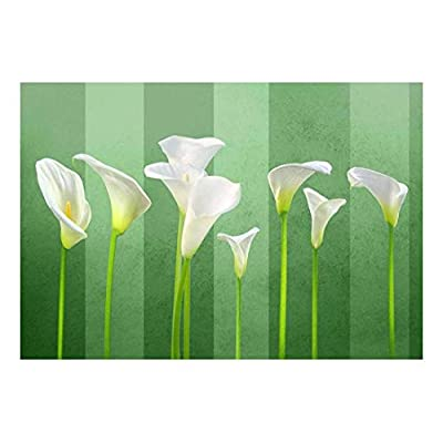 Dazzling Artisanship, Arum Lilies with Green Striped Textured Background Wall Mural, That You Will Love