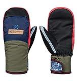 DC Apparel Franchise Womens Snow MITT SE Glove, Multi REPURPOSE MI, M