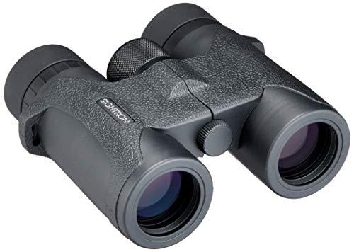 SIGHTRON 25164 SIII Series Binoculars, 10x32mm, Roof Prism, Black Rubber Finish ()