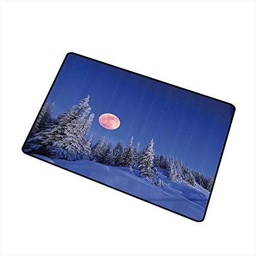 Entrance Door mat Winter Decorations Winter Night in Mountain Tops with Full Moon in Idyllic Sublime Habitat View W30 xL39 Easy to Clean Multi ()