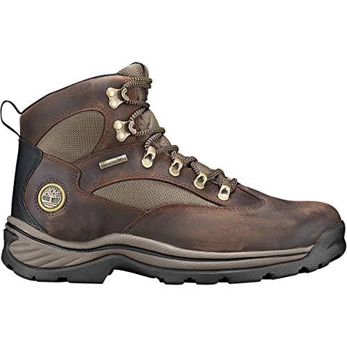 Timberland Men's Chocorua Trail Waterproof Hiking Boot,Brown w/Green,US 9 M