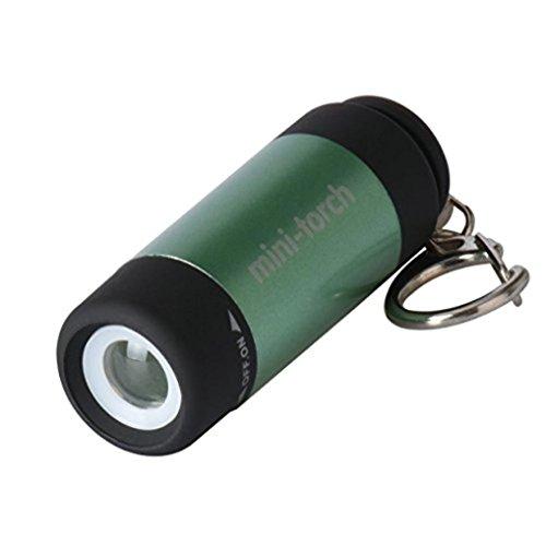 Vanvler USB Mini-Torch 0.3W 25Lum LED Torch Lamp - Rechargeable Flashlight Keychain (Upgrade Green)