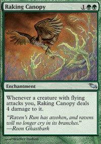 Magic: the Gathering - Raking Canopy - Shadowmoor