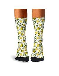 Men's Funny Owls Birds Group Decor compression sweat-absorbent crazy socks running aesthetic calf socks