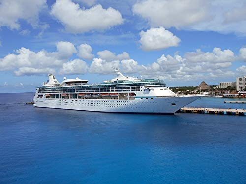 (Home Comforts Framed Art for Your Wall Cozumel Cruise Ship Ship Travel Vision The Seas Vivid Imagery 10 x 13 Frame)