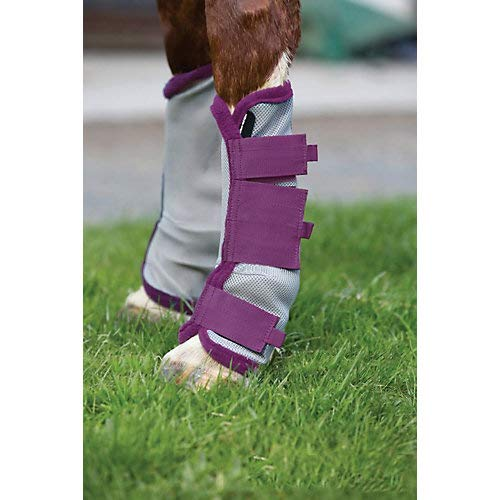 amiGO Fly Boots Pony Silver/Purple by amiGO