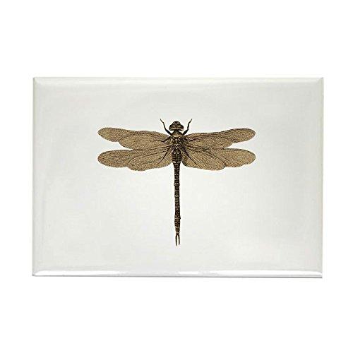 CafePress Dragonfly Vintage Rectangle Magnet, 2