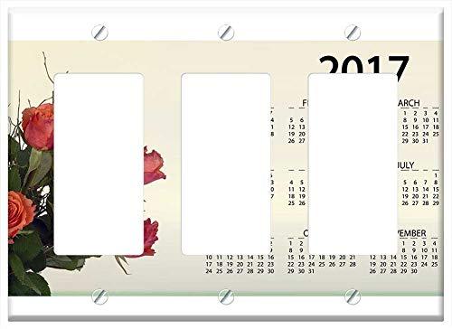 Amazon.com: Switch Plate Single Toggle - Agenda Calendar ...