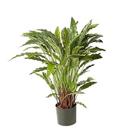 Piante Da Appartamento A Foglia Verde.Artplants De Calathea Artificiale Bahati Con 80 Foglie Verde