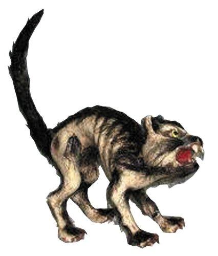 (Halloween Cat Prop Halloween)