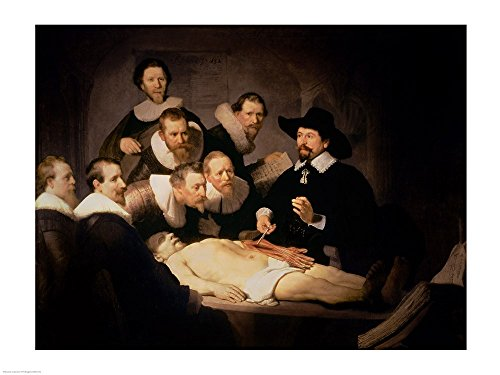 The Anatomy Lesson of Dr. Nicolaes Tulp, 1632 by Rembrandt van Rijn Art Print, 24 x 18 (Nicolaes Van)