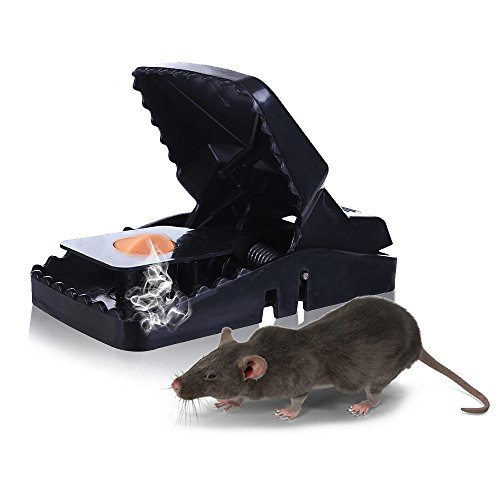 Mouse Trap Mice Traps Vole Catcher Snap Humane Power Rodent Rat Killer The Best Control Better and Safer Than Glue & Poison No More Mices Sensitive Reusable and Durable by Work - 6 PACK (6)