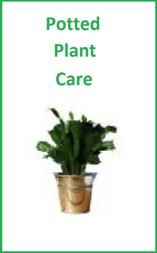 How To Take Care Of Specialty Potted Plants: Poinsettias,Gardenias,Azaleas,Amaryllis,Christmas Cactus,and More.