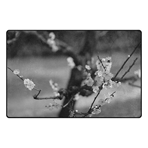 Japan Sunlight White Black Monochrome Garden 31x20 Inches Area Rugs Soft Doormats Carpet Lightweight For Bedroom Decoration Entrance by Double Joy - Garden Black Area Rugs