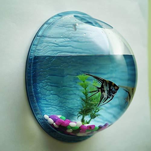Generic Pot Plant Wall Mounted Hanging Aquarium Transparent Acrylic Fish Bowl Multi Colour Non- Breakable